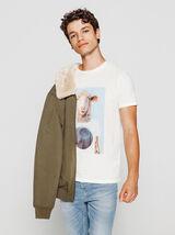 T-shirt photoprint mouton