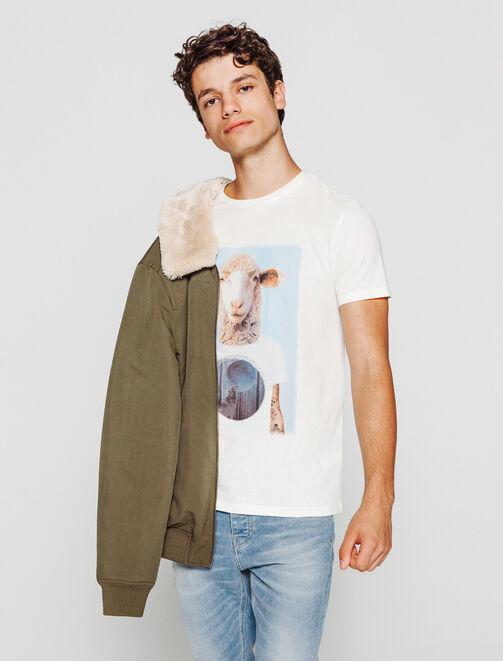 T-shirt photoprint mouton homme