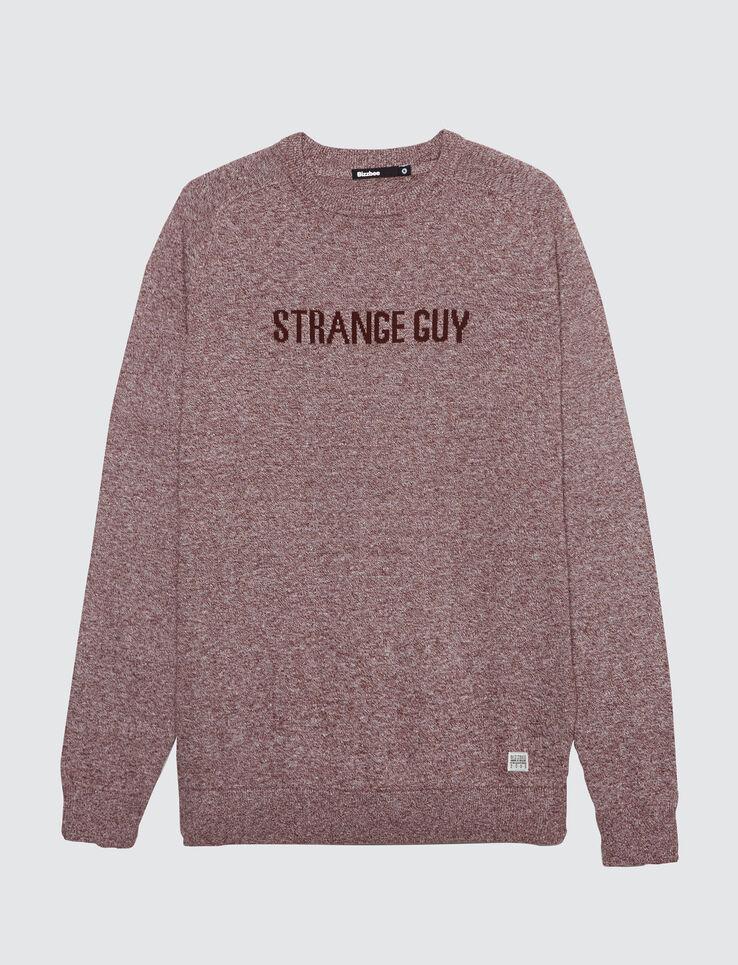 Pull mouliné jacquard Strange Guy