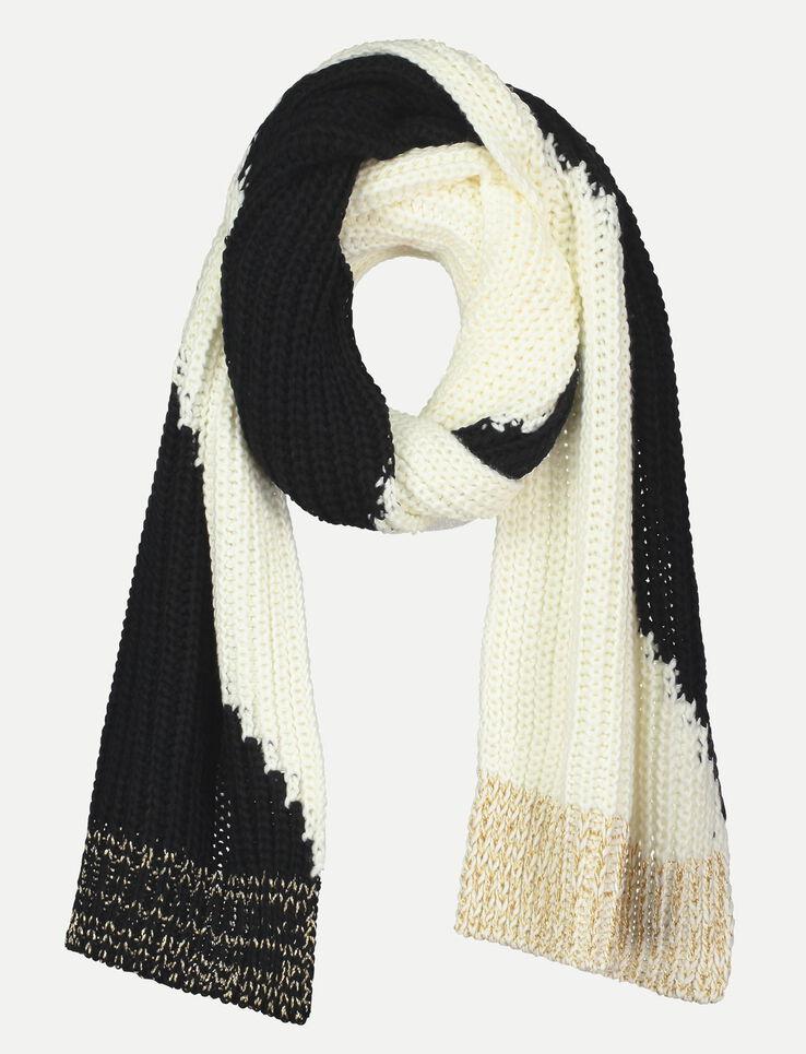 Grande écharpe tricot