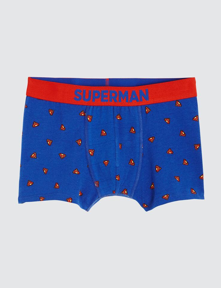 Boxer SUPERMAN®