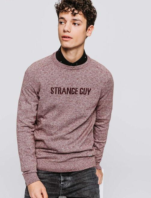 Pull mouliné jacquard Strange Guy  homme
