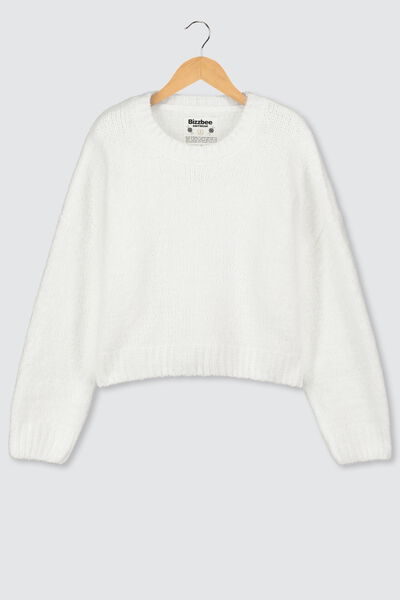 Pull col rond chenille